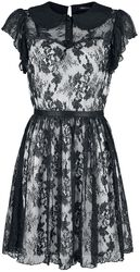 Lace Overlay Colla Dress