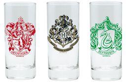 Hogwarts, Slytherin und Gryffindor