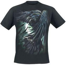 Shadow Raven
