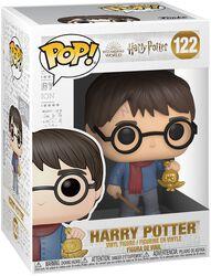 Harry Potter (Holiday) Vinyl Figur 122