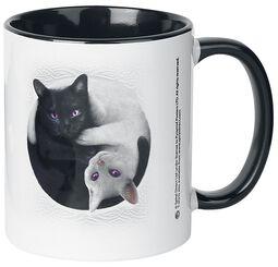 Ying Yang Cats