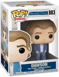 Dawson's Creek Dawson Vinyl Figure 883