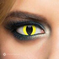 Chromaview Yellow Cat