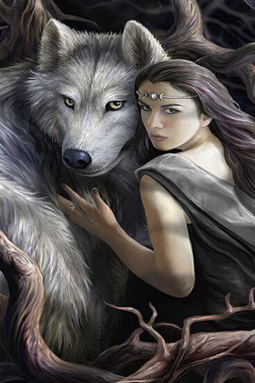 Wolf Anne Stokes Bettwäsche Emp